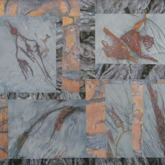 Seaweeds harmony,  22 by 28 inch.  Canvas panel