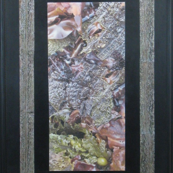 A collage of seaweeds.  22 by 28 inch Canvas panel