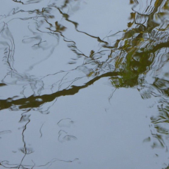 Nature as an abstract painter in Vienna no.10