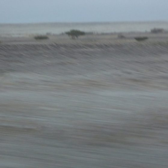Views from the desert