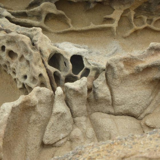 Sculptures and reliefs made by nature